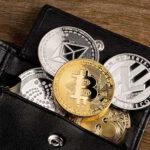 Monederos para criptomonedas.
